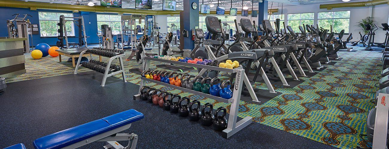 fitness-new